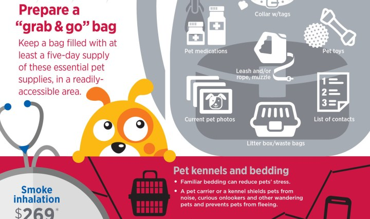 Disaster Plan for Pets (PRNewsFoto/Nationwide)