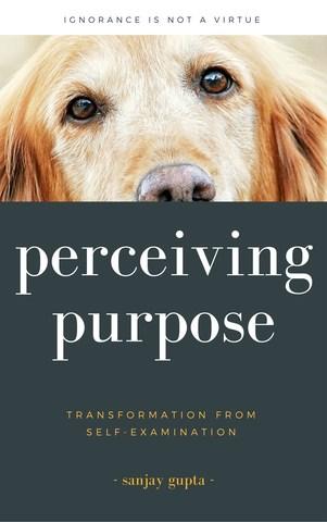perceiving-purpose