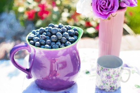 blueberries-864628_960_720