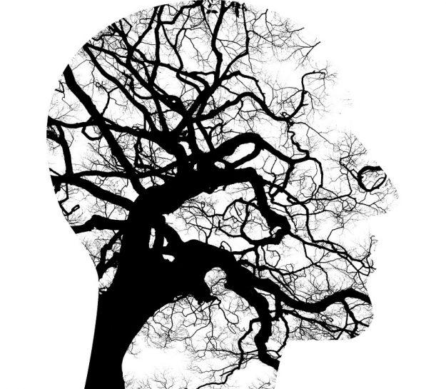 mental-health-2313430_960_720