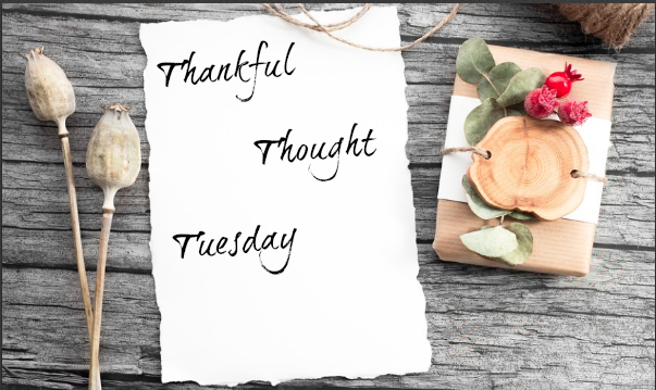 thankful thought tuesday